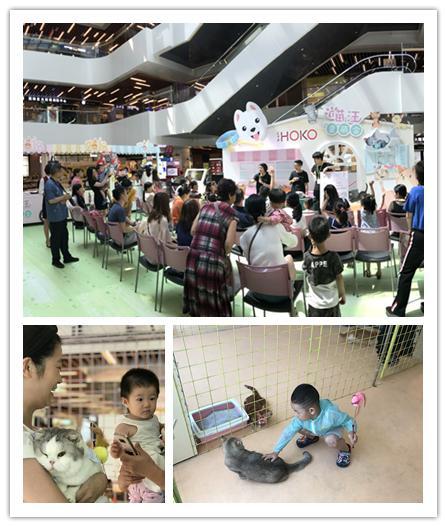消费升级新体验,CTFHOKO用萌宠引爆儿童节活动