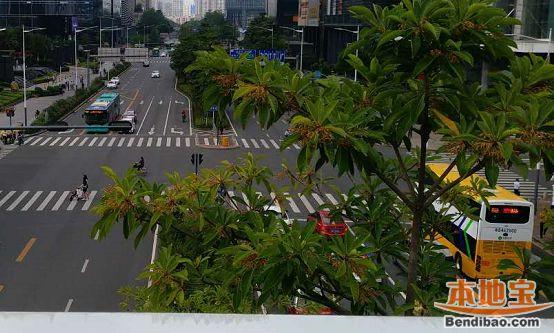 6月起深圳28条公交线路调整 坪山等区的小伙伴别坐错车