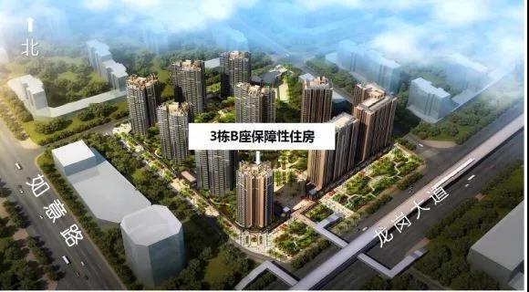 深圳龙岗人才房开始申请 月租最低15.65元/平