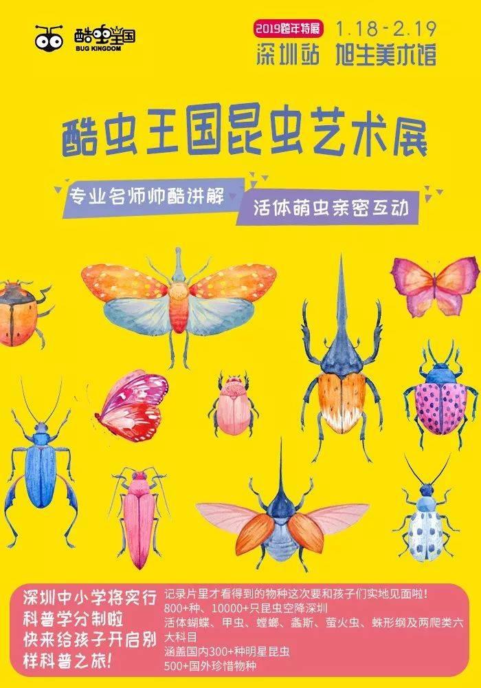 深圳昆虫艺术展门票特价29.8元抢购