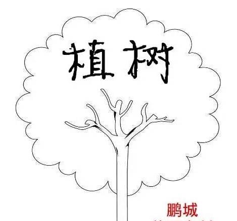 深圳大鹏美丽乡村可以植树吗?