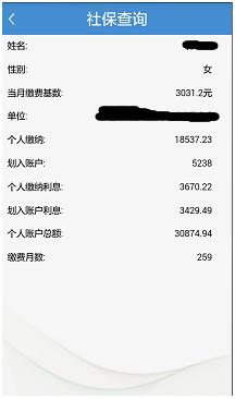 武汉社保个人查询(2017)