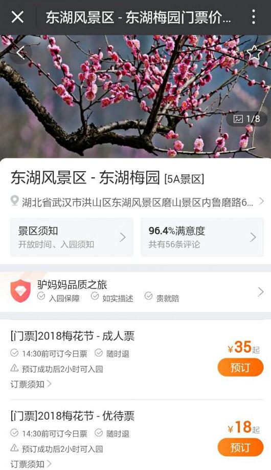 2018武汉春节活动 东湖梅花节