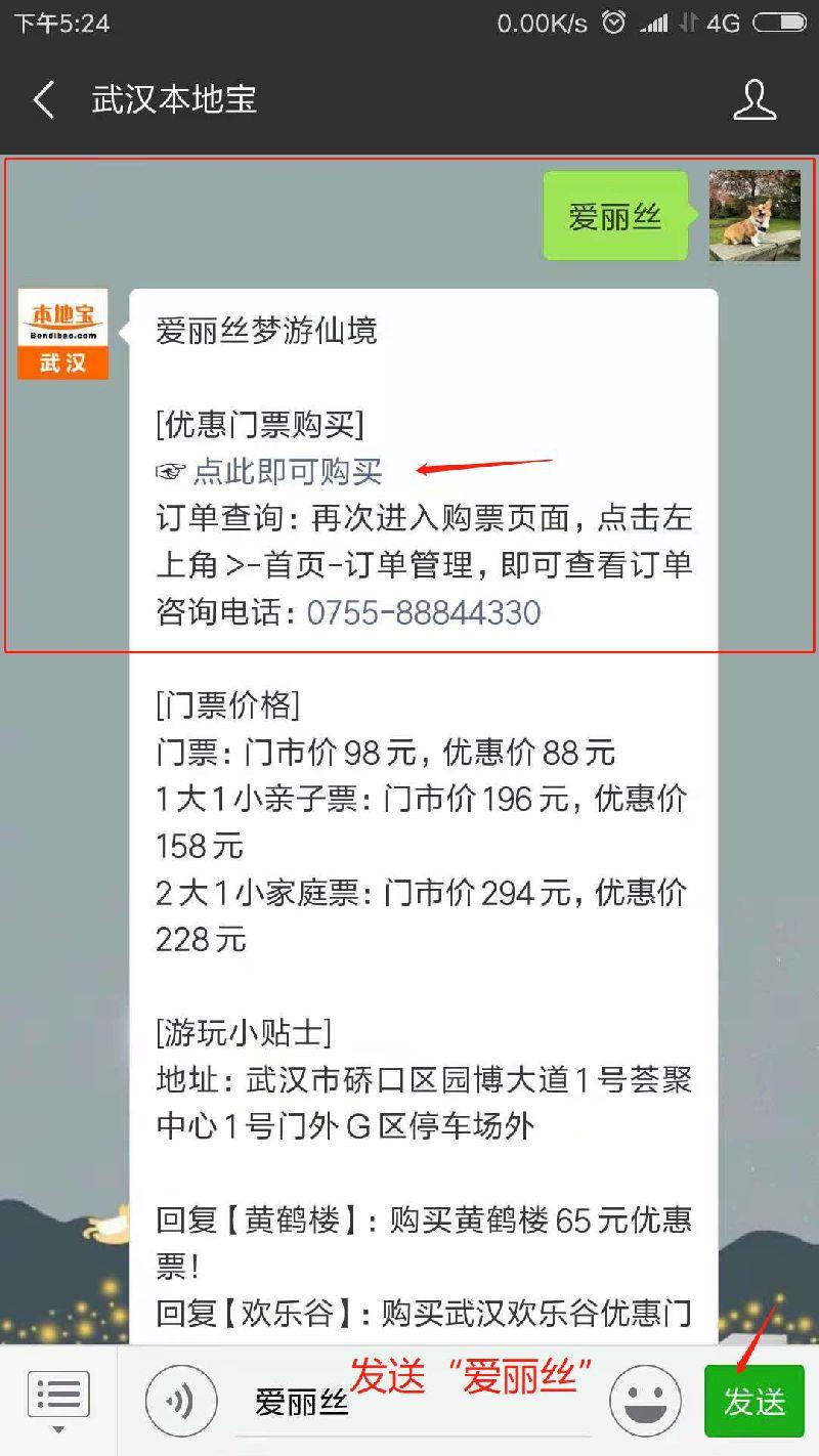 武汉裸眼3D游戏剧《爱丽丝梦游仙境》演出时间、地点和门票