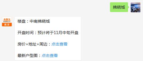 武汉中南拂晓城(均价+地址+开盘时间+户型)