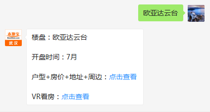 武汉欧亚达云台(房价+地址+开盘时间+户型图)