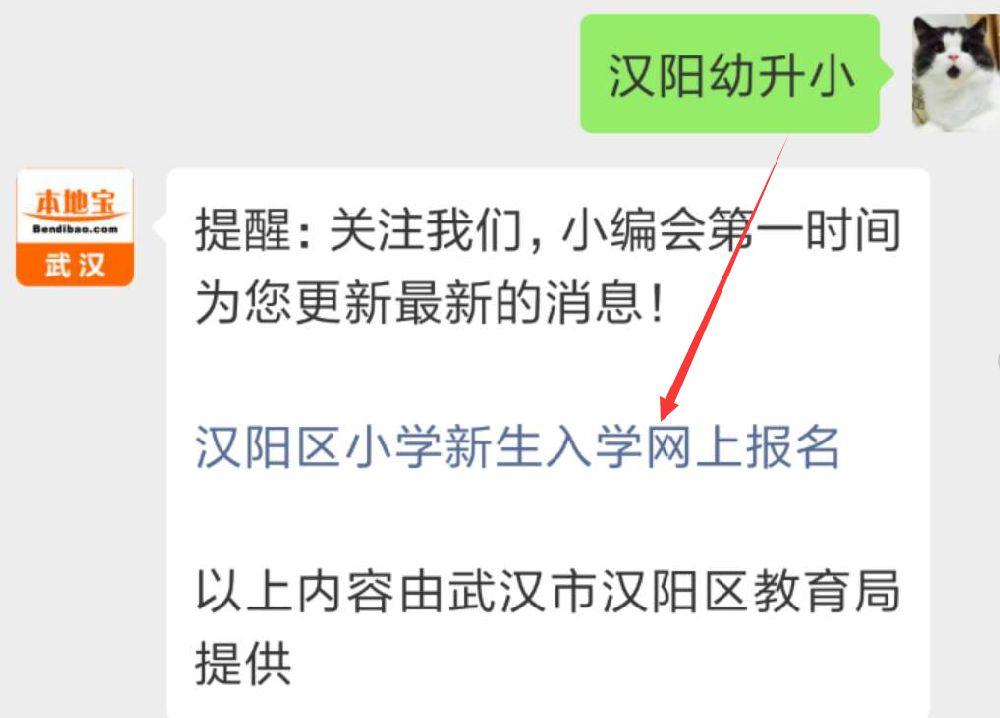 2019武汉幼升小 汉阳区新生入学网报流程发布