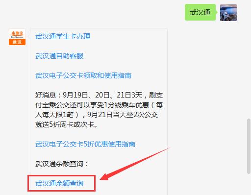 2019通余额查询(手机网上查询办法)