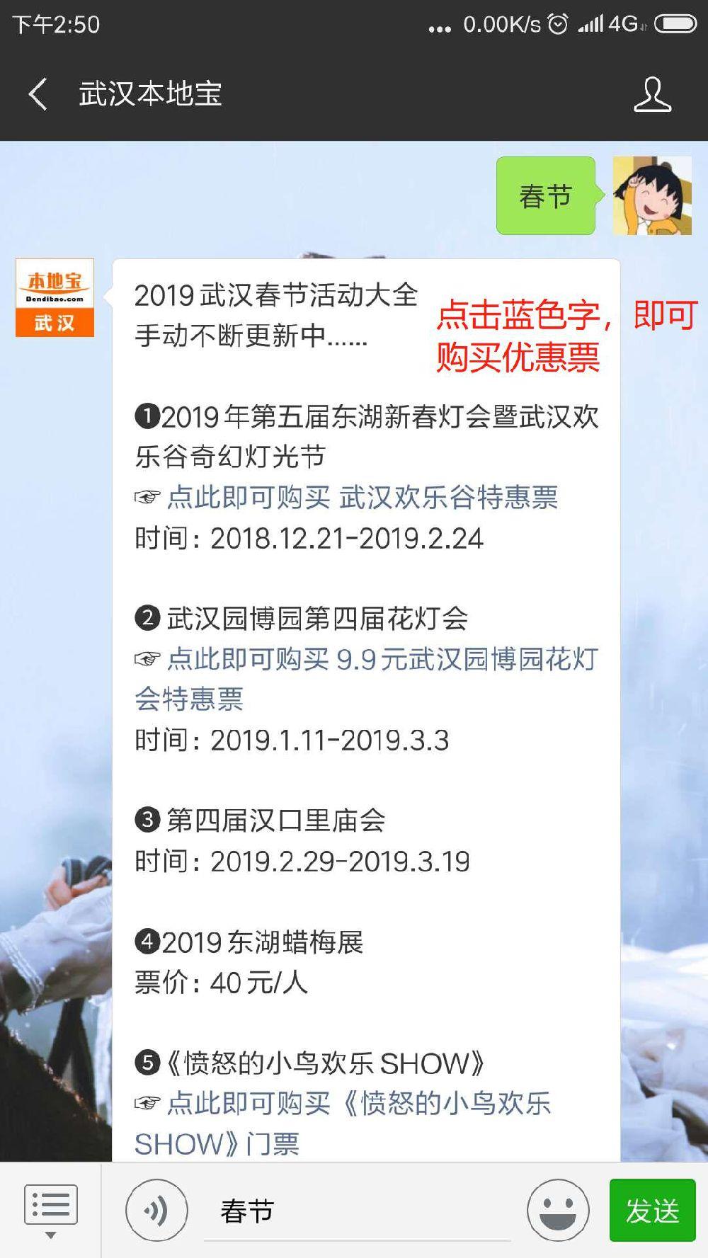 2019武汉春节活动 第四届武汉园博园花灯会