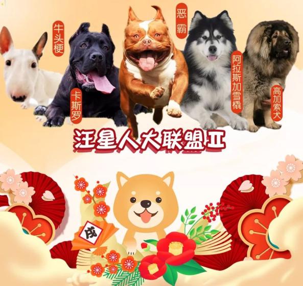 无锡动物园汪汪队春节活动(时间+地点+
