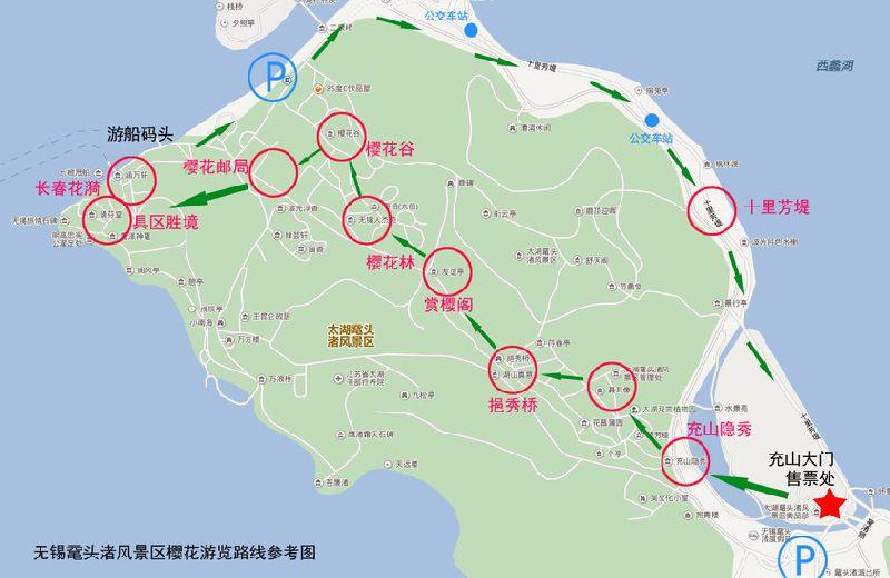 无锡鼋头渚樱花2019实况播报(持续更新)
