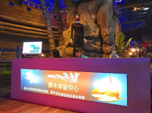 西安华夏文旅海洋公园游玩攻略(地址+门票+表演时间) 行业新闻 丰雄广告第10张