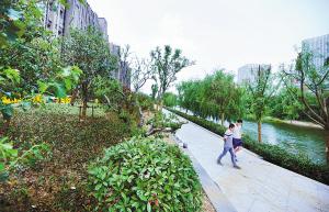 河滨河公园有望今夏整体建成敞园开放