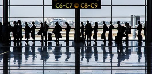 请问在机场入境需要检疫的有哪些东西