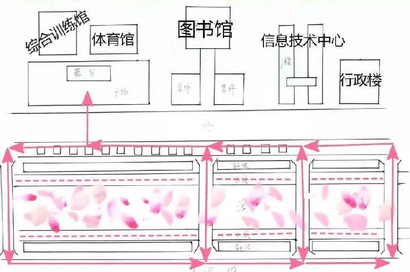 宜昌三峡大学2017桃花节浏览路线