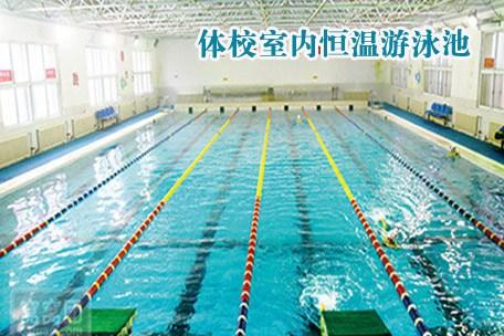 宜昌室内游泳好去处(地点+路线)