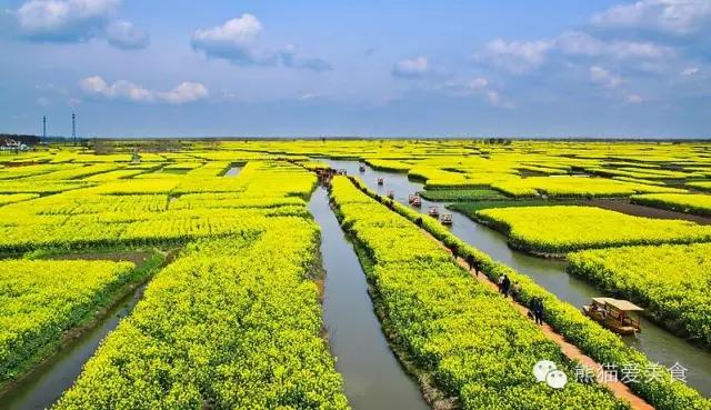 扬州4月赏花攻略