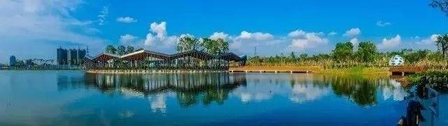 2018中山端午节有哪些湿地公园好玩?