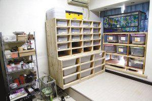 27岁摄影师家中建蛇屋 最多时养蛇300余条