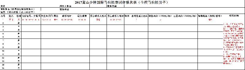 2017嵩山马拉松团体报名表下载